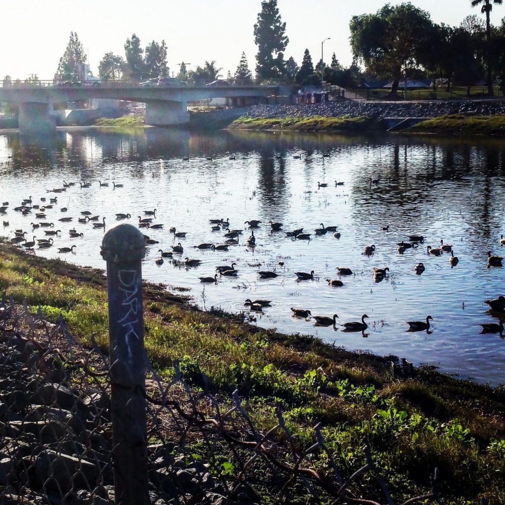 San Gabriel river bike trail