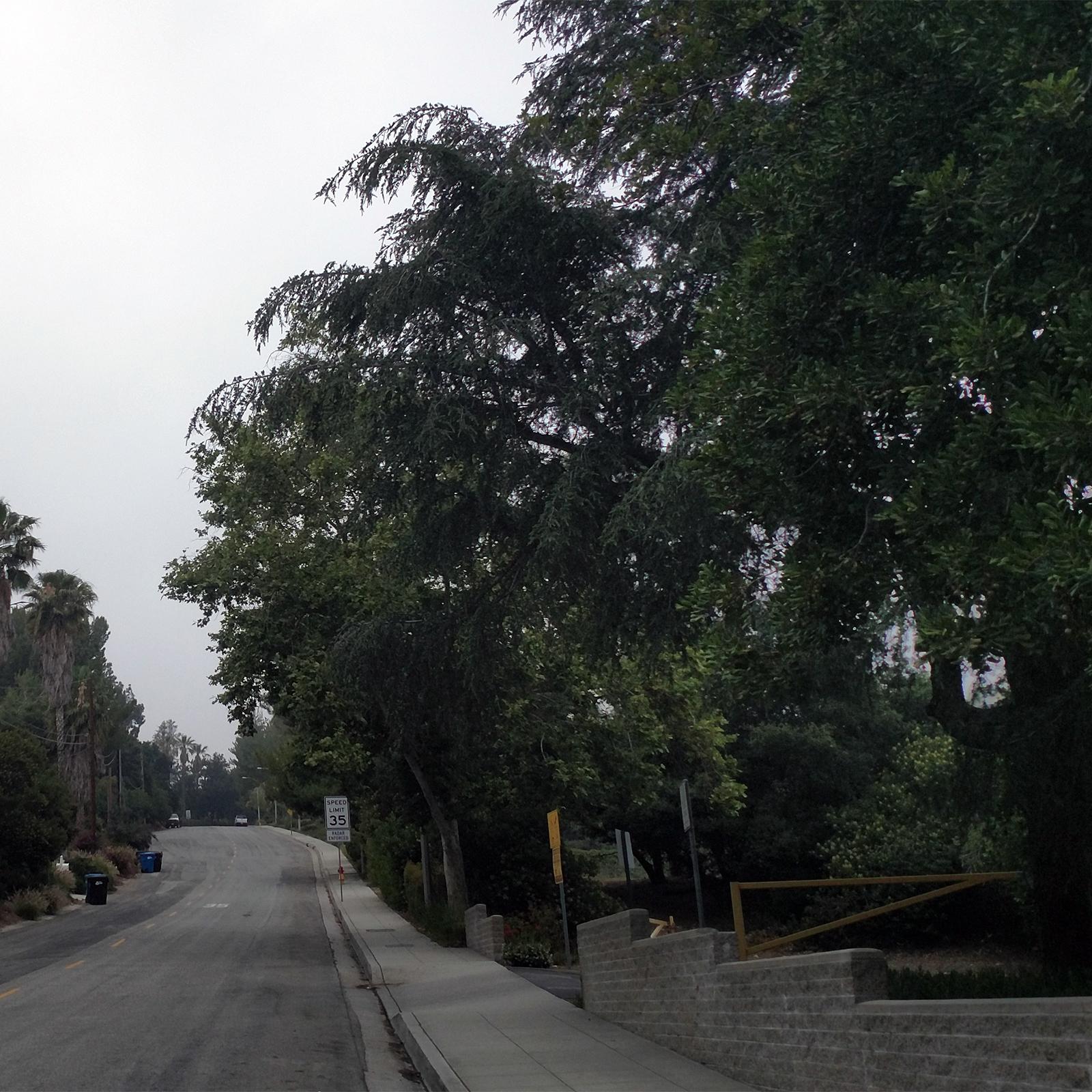 Loma Alta Park